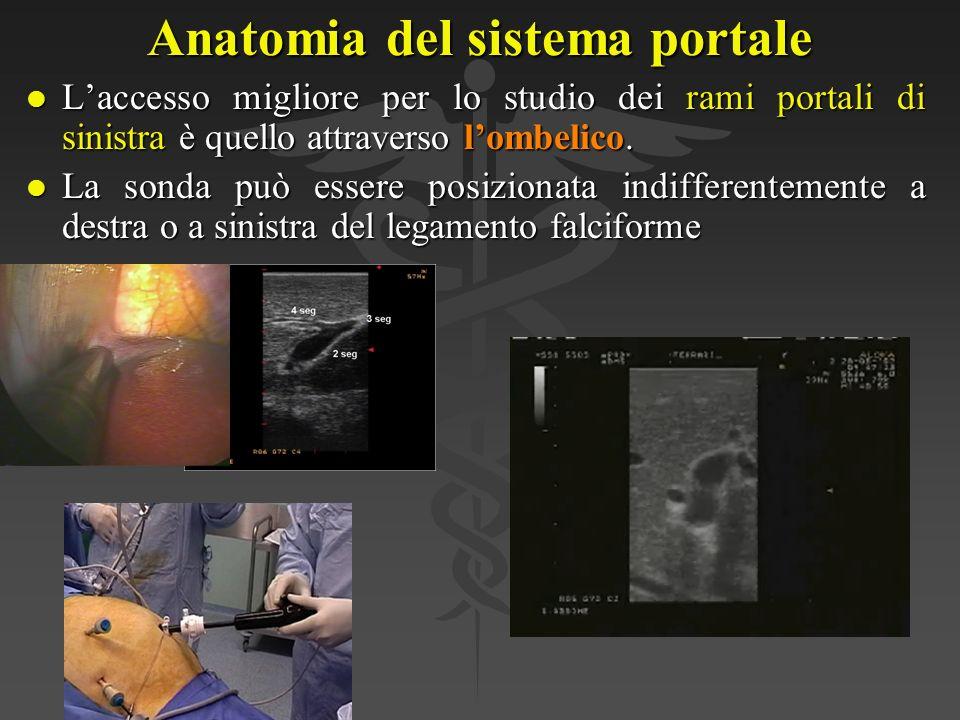 Anatomia del sistema portale
