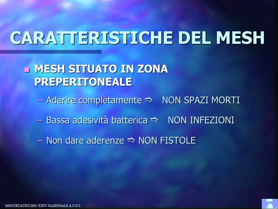 CARATTERISTICHE DEL MESH