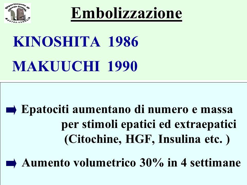 Embolizzazione KINOSHITA 1986 MAKUUCHI 1990