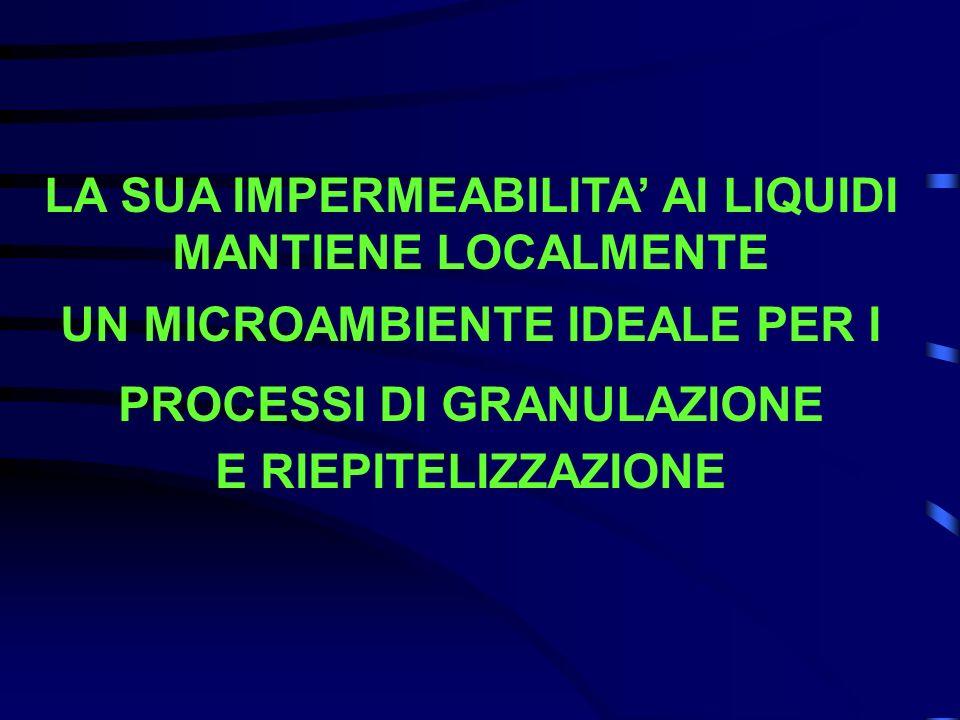 LA SUA IMPERMEABILITA' AI LIQUIDI MANTIENE LOCALMENTE