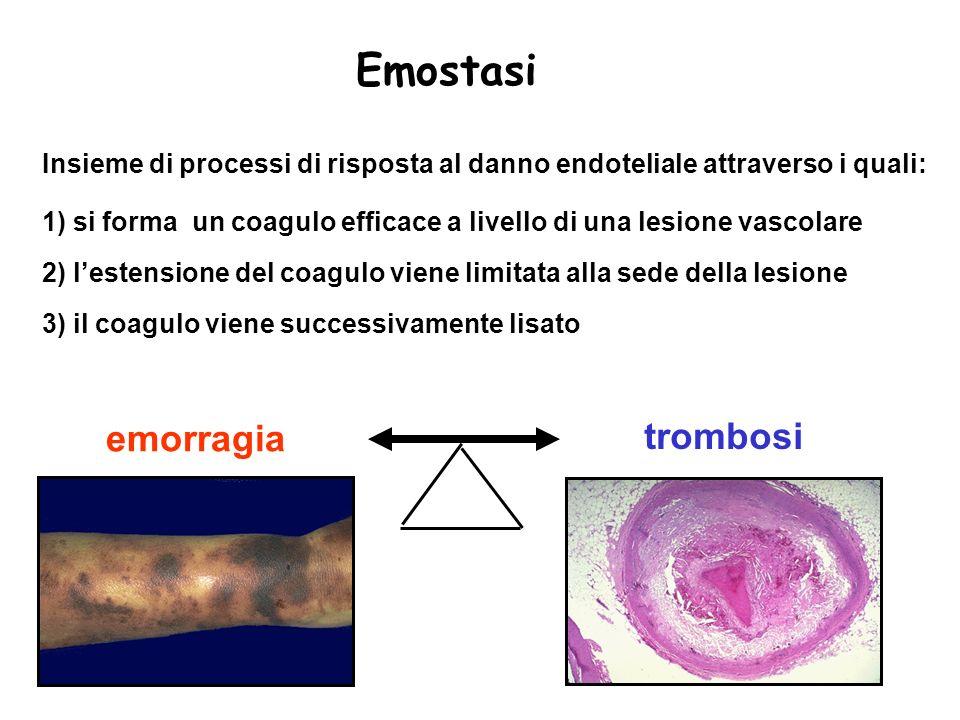 Emostasi emorragia trombosi
