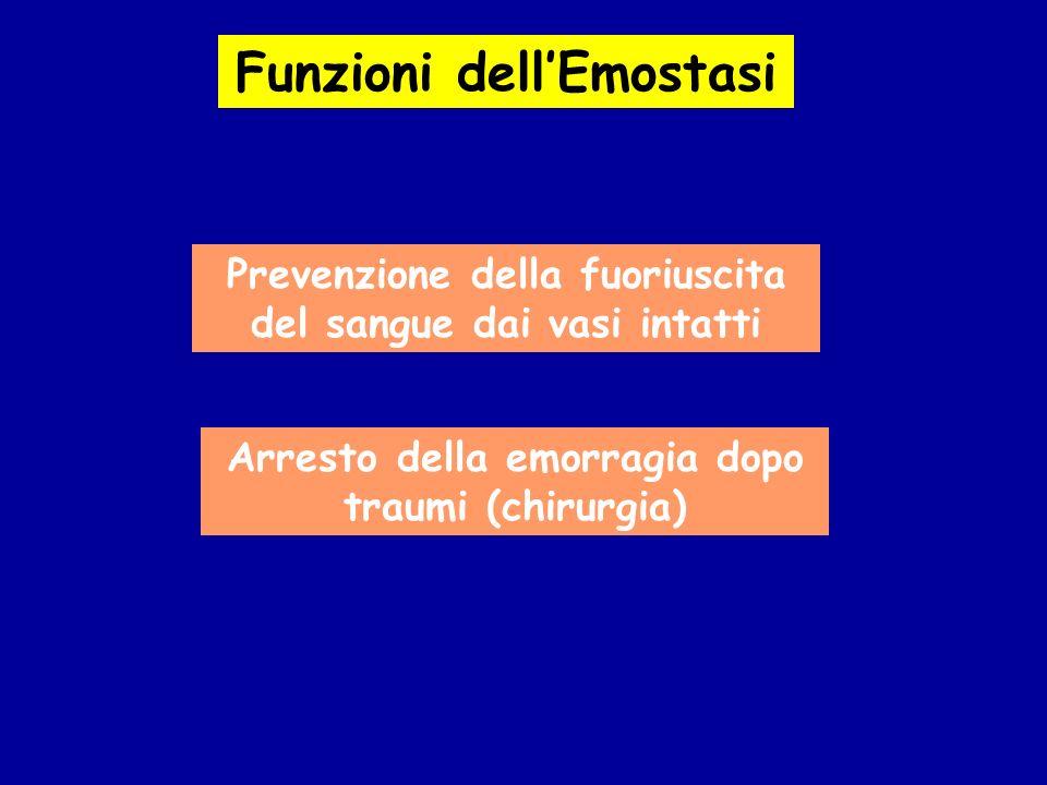 Funzioni dell'Emostasi
