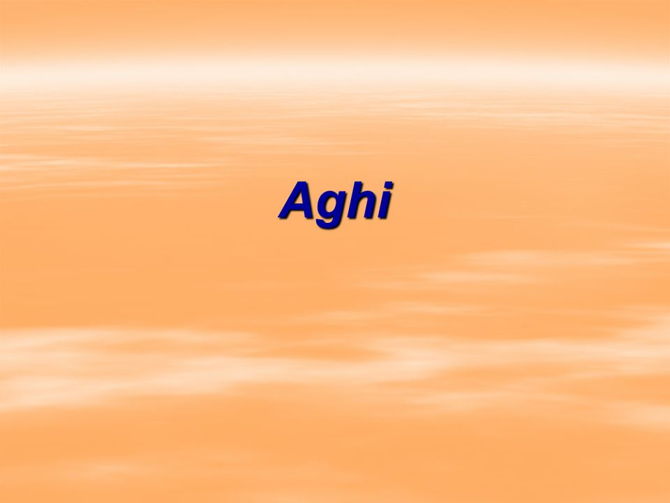 Aghi