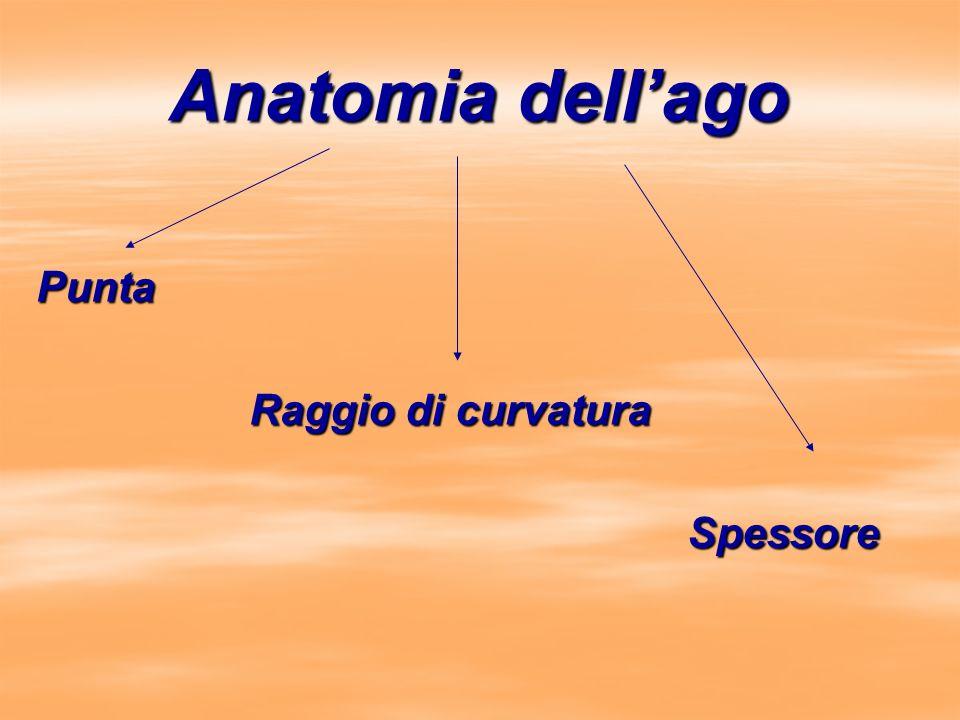 Anatomia dell'ago Punta Raggio di curvatura Spessore