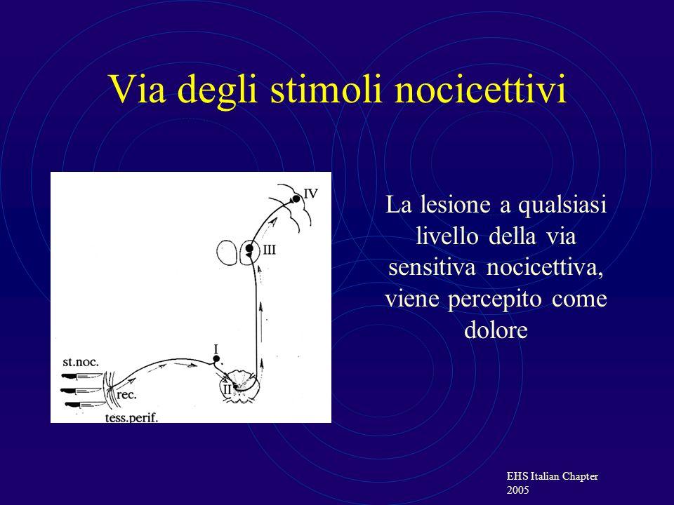 Via degli stimoli nocicettivi