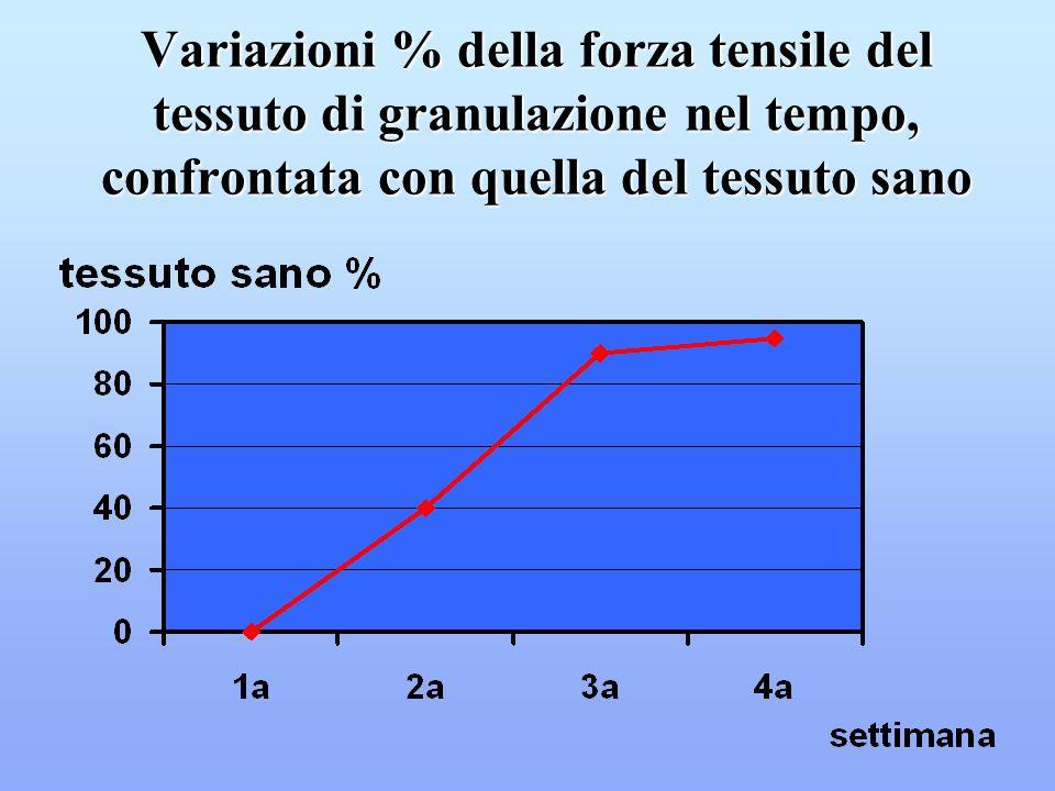 Variazioni % della forza tensile del tessuto di granulazione nel tempo, confrontata con quella del tessuto sano