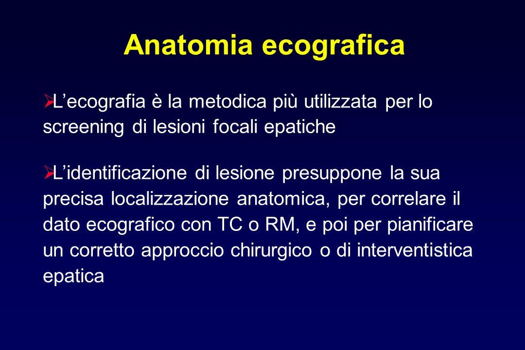 Anatomia ecografica L'ecografia è la metodica più utilizzata per lo screening di lesioni focali epatiche.