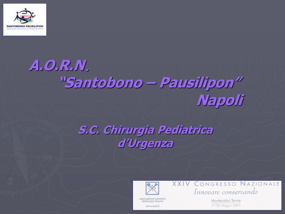 A.O.R.N. Santobono – Pausilipon Napoli