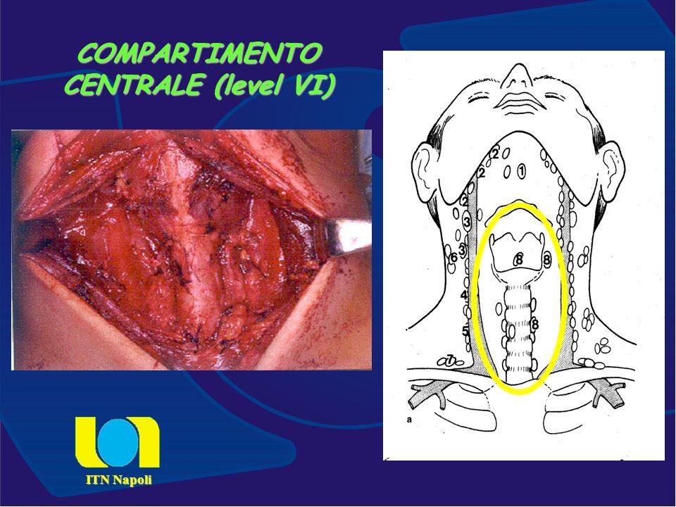 COMPARTIMENTO CENTRALE (level VI)