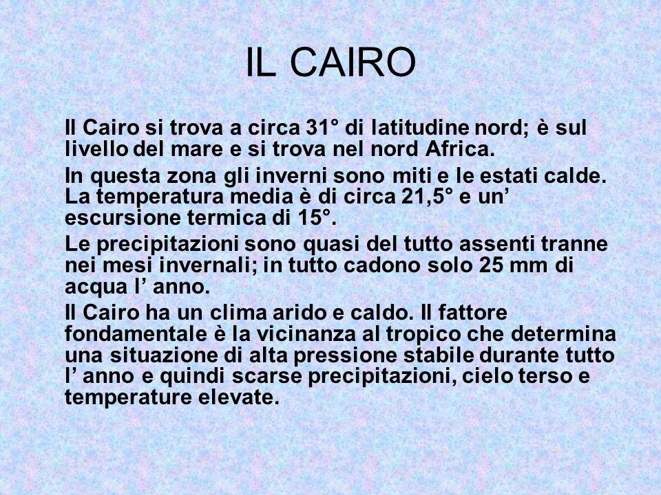 IL CAIRO Il Cairo si trova a circa 31° di latitudine nord; è sul livello del mare e si trova nel nord Africa.