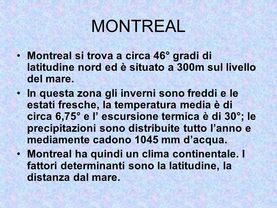 MONTREAL Montreal si trova a circa 46° gradi di latitudine nord ed è situato a 300m sul livello del mare.