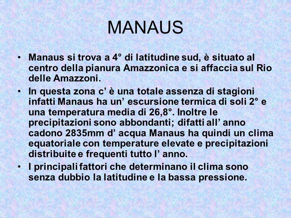 MANAUS Manaus si trova a 4° di latitudine sud, è situato al centro della pianura Amazzonica e si affaccia sul Rio delle Amazzoni.
