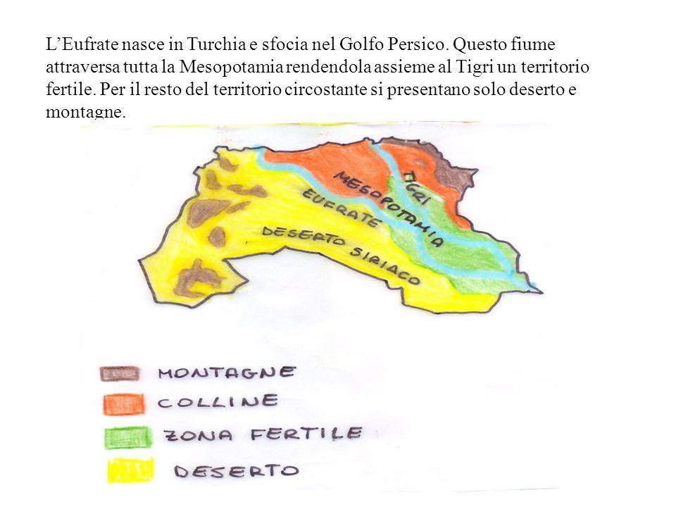 L'Eufrate nasce in Turchia e sfocia nel Golfo Persico
