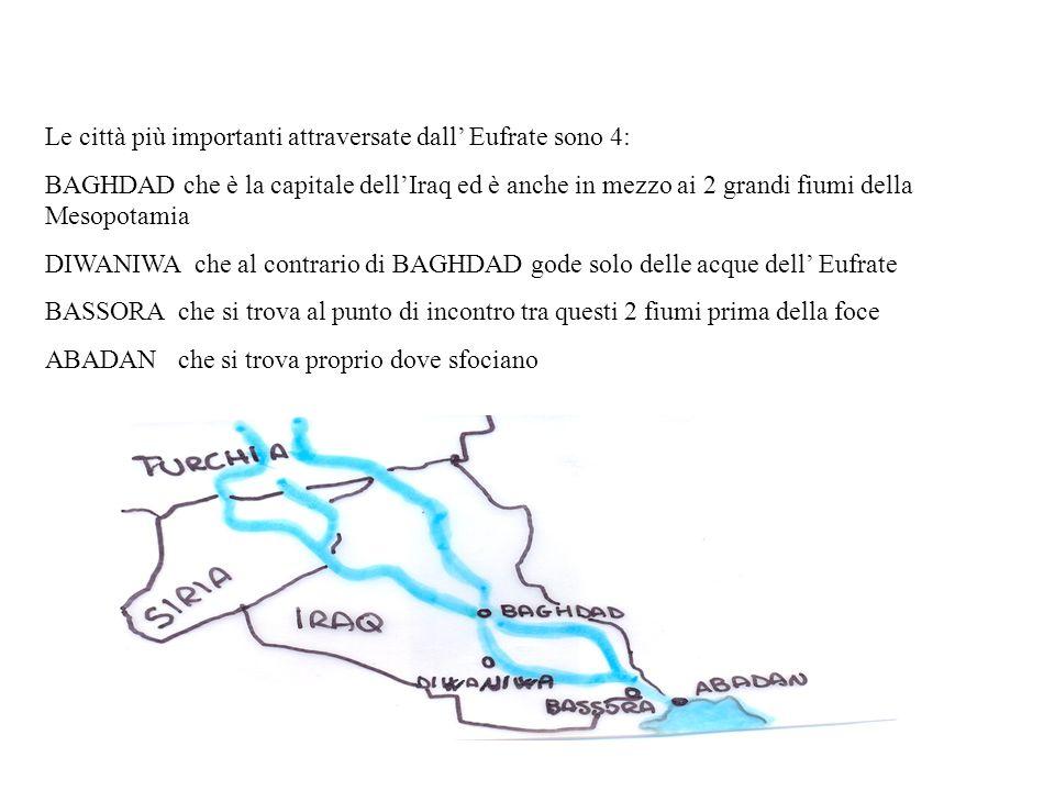 Le città più importanti attraversate dall' Eufrate sono 4: