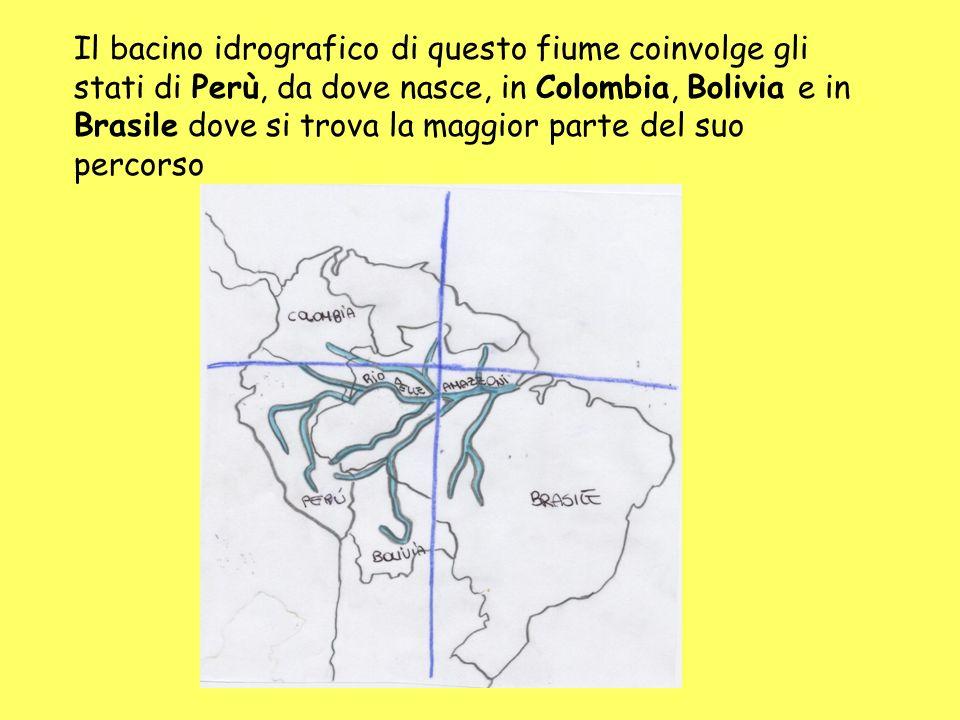 Il bacino idrografico di questo fiume coinvolge gli stati di Perù, da dove nasce, in Colombia, Bolivia e in Brasile dove si trova la maggior parte del suo percorso