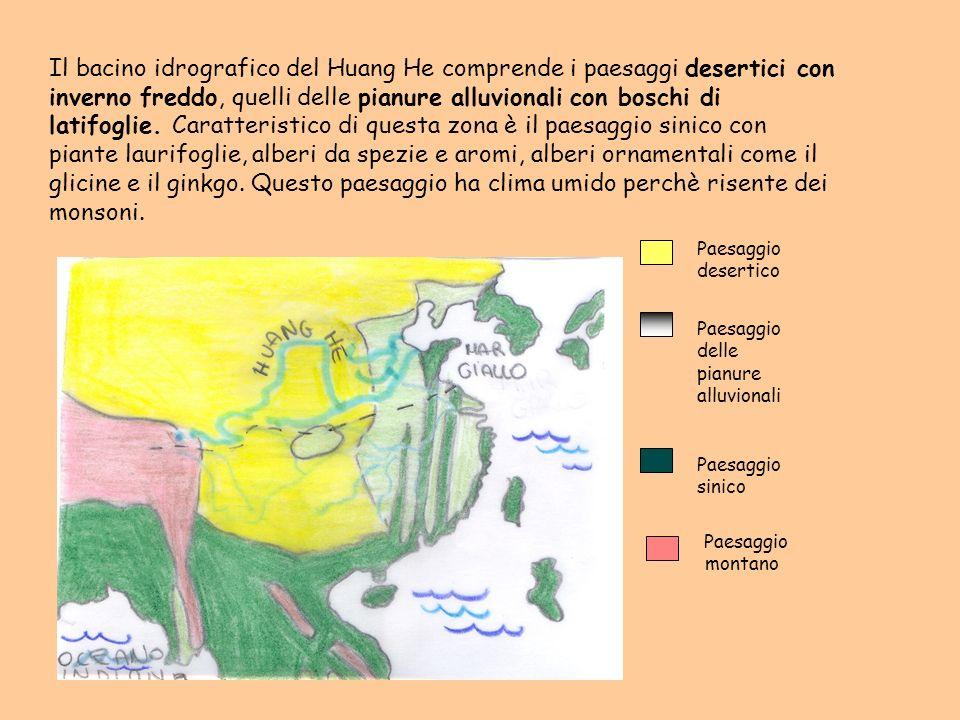 Il bacino idrografico del Huang He comprende i paesaggi desertici con inverno freddo, quelli delle pianure alluvionali con boschi di latifoglie. Caratteristico di questa zona è il paesaggio sinico con piante laurifoglie, alberi da spezie e aromi, alberi ornamentali come il glicine e il ginkgo. Questo paesaggio ha clima umido perchè risente dei monsoni.