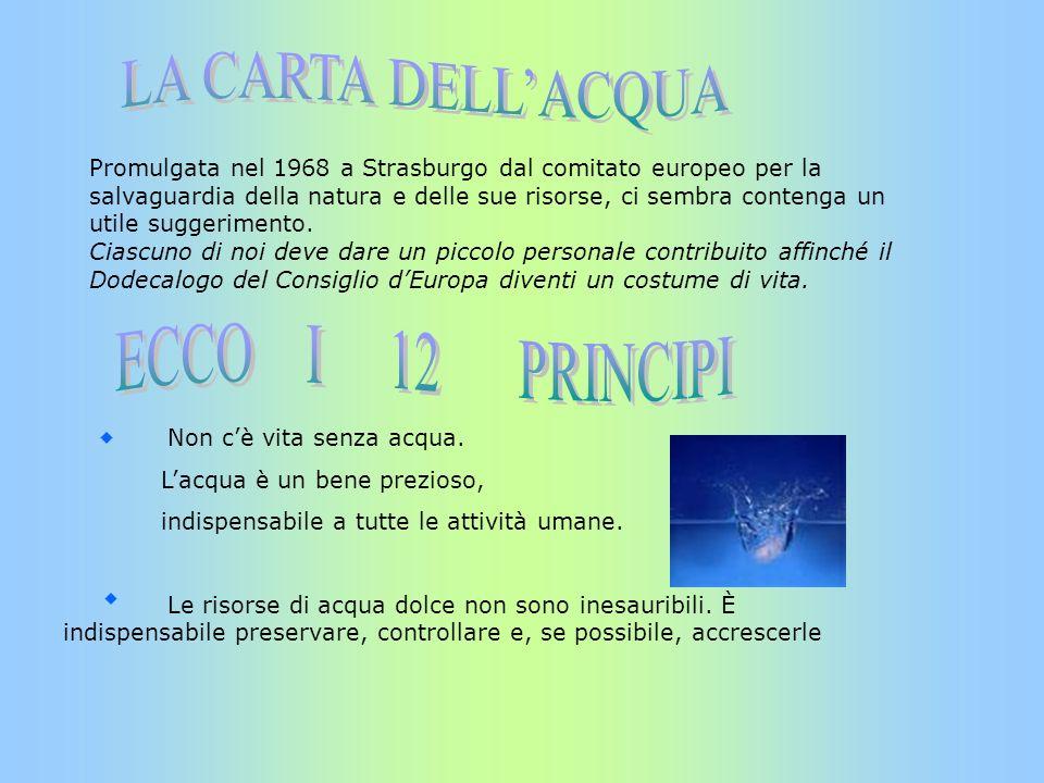 LA CARTA DELL'ACQUA ECCO I 12 PRINCIPI