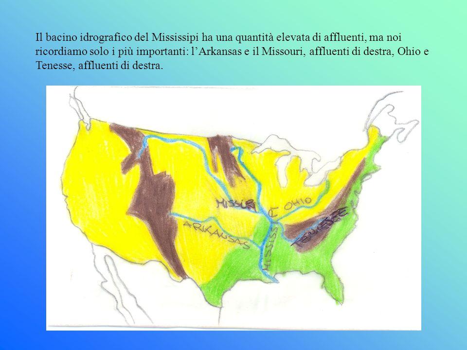 Il bacino idrografico del Mississipi ha una quantità elevata di affluenti, ma noi ricordiamo solo i più importanti: l'Arkansas e il Missouri, affluenti di destra, Ohio e Tenesse, affluenti di destra.