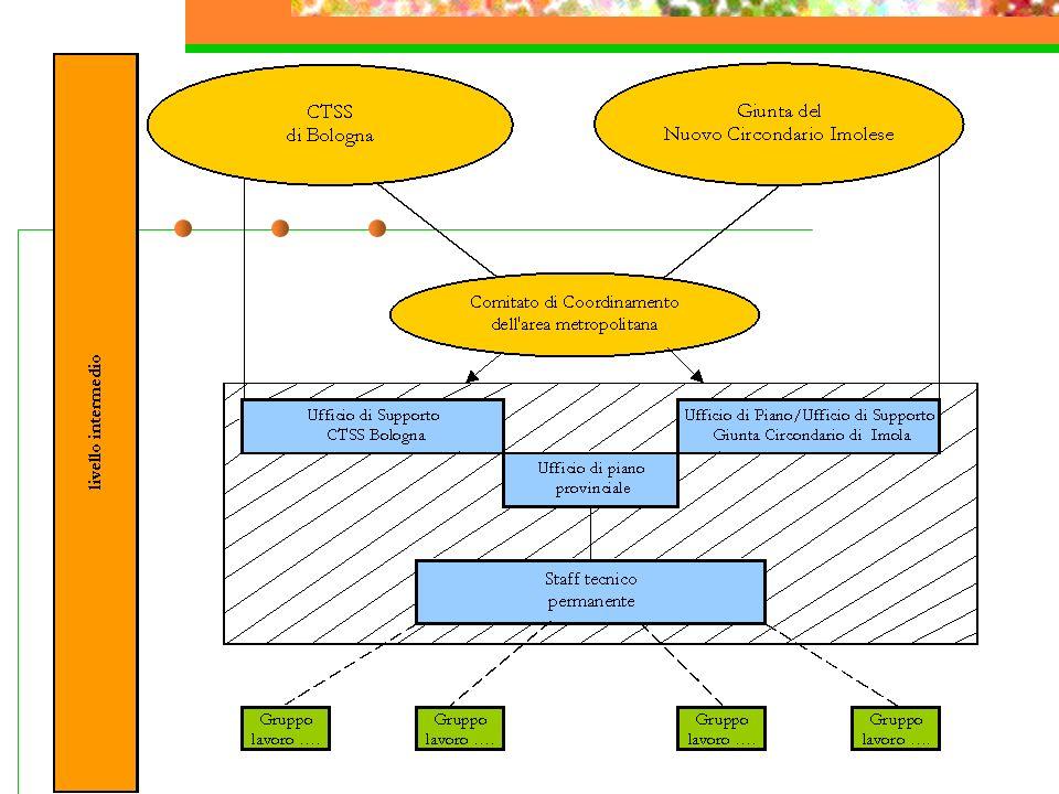 Modello di governance a livello intermedio