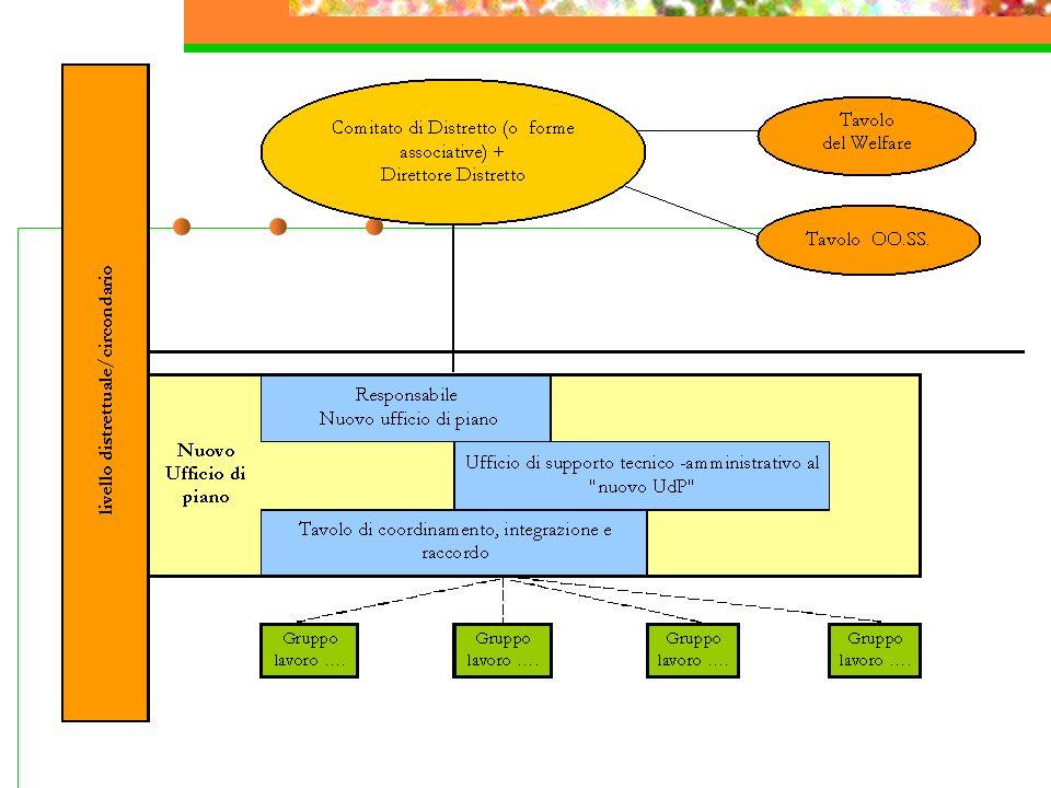 Modello di governance a livello distrettuale