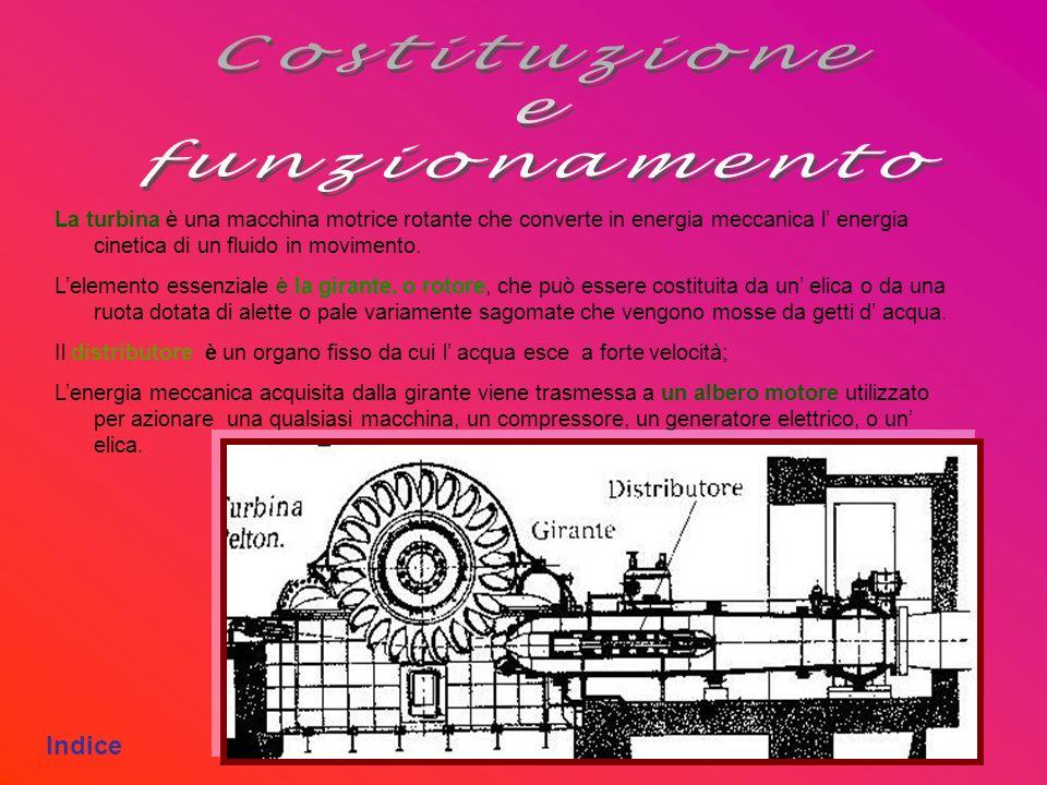 Costituzione e funzionamento Indice