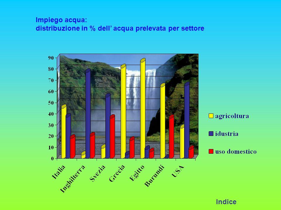 Impiego acqua: distribuzione in % dell' acqua prelevata per settore Indice
