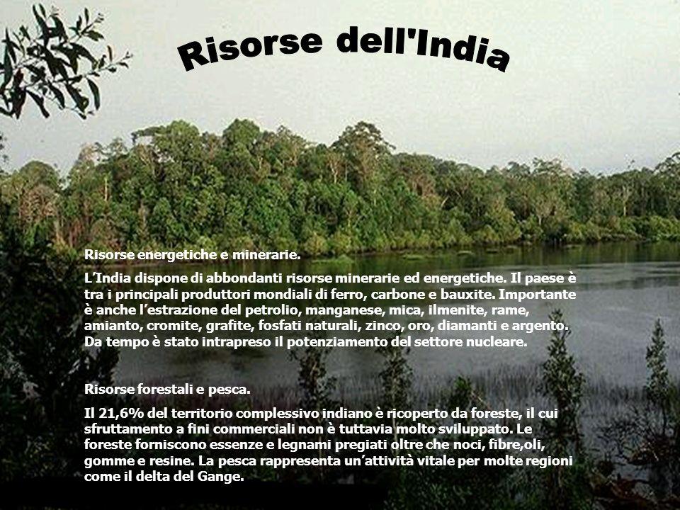 Risorse dell India Risorse energetiche e minerarie.