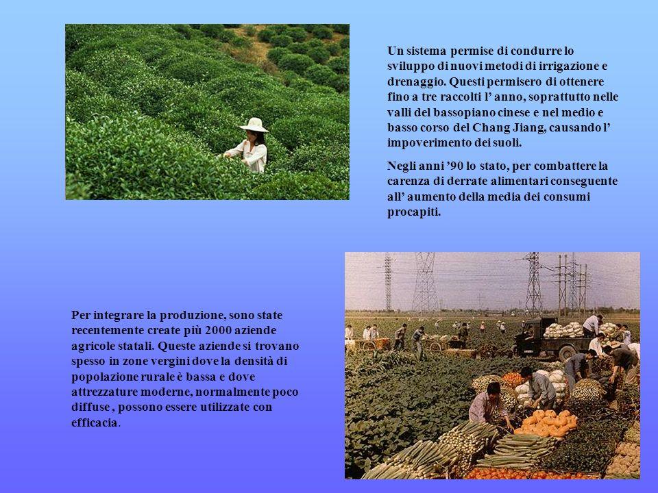 Un sistema permise di condurre lo sviluppo di nuovi metodi di irrigazione e drenaggio. Questi permisero di ottenere fino a tre raccolti l' anno, soprattutto nelle valli del bassopiano cinese e nel medio e basso corso del Chang Jiang, causando l' impoverimento dei suoli.