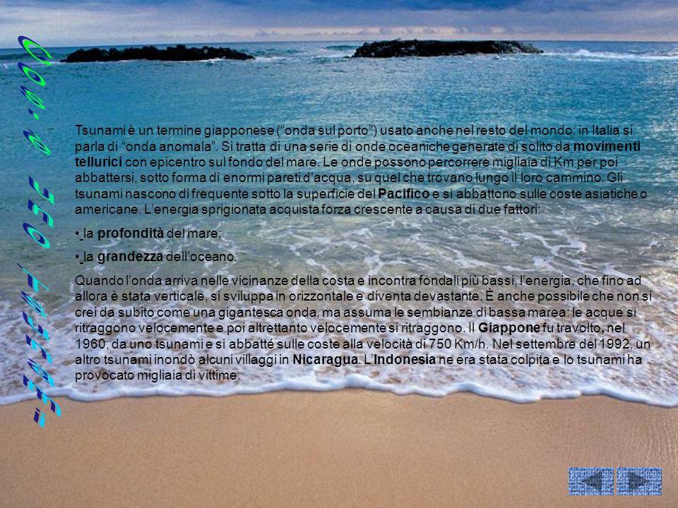 Tsunami è un termine giapponese ( onda sul porto ) usato anche nel resto del mondo; in Italia si parla di onda anomala . Si tratta di una serie di onde oceaniche generate di solito da movimenti tellurici con epicentro sul fondo del mare. Le onde possono percorrere migliaia di Km per poi abbattersi, sotto forma di enormi pareti d'acqua, su quel che trovano lungo il loro cammino. Gli tsunami nascono di frequente sotto la superficie del Pacifico e si abbattono sulle coste asiatiche o americane. L'energia sprigionata acquista forza crescente a causa di due fattori: