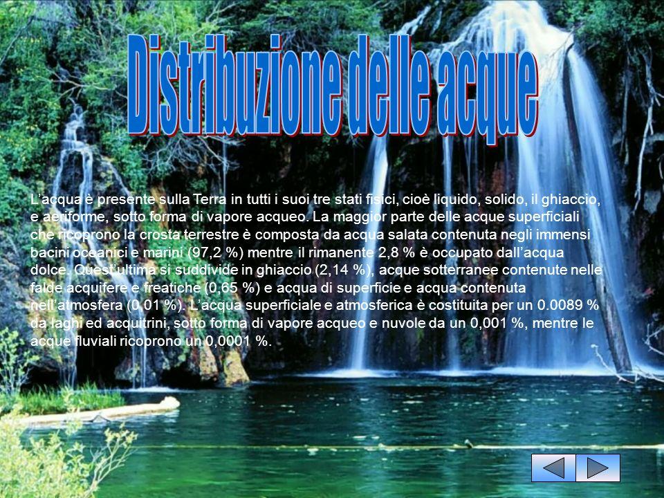 Distribuzione delle acque