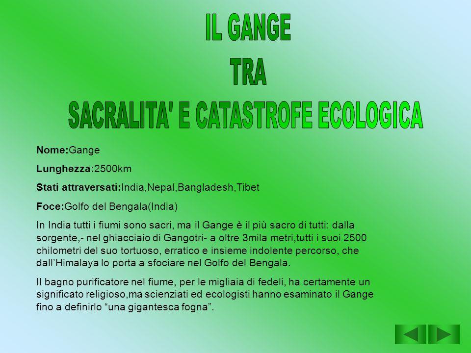SACRALITA E CATASTROFE ECOLOGICA