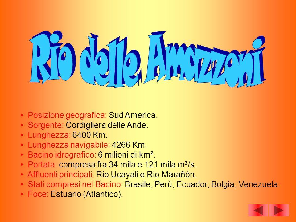 Rio delle Amazzoni Posizione geografica: Sud America.