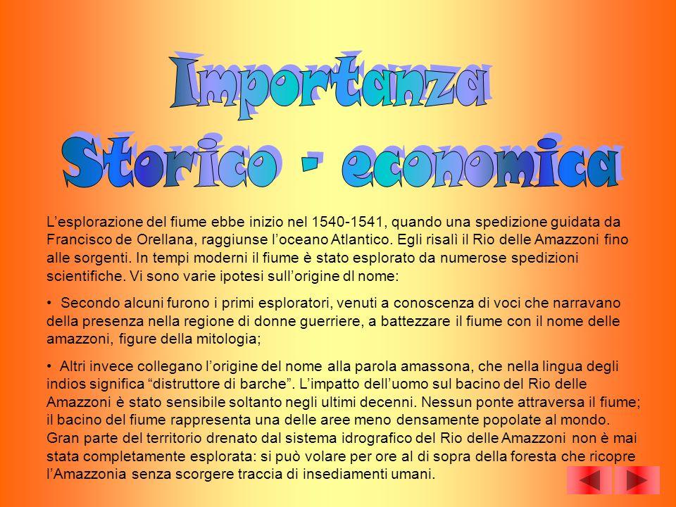 Importanza Storico - economica