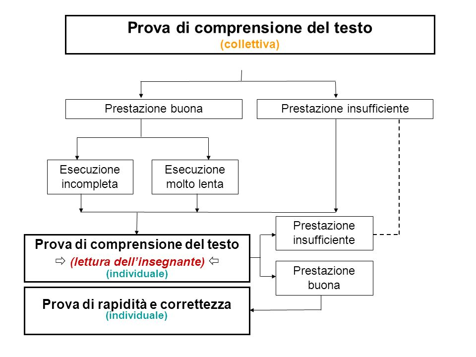 Prova di comprensione del testo (collettiva)