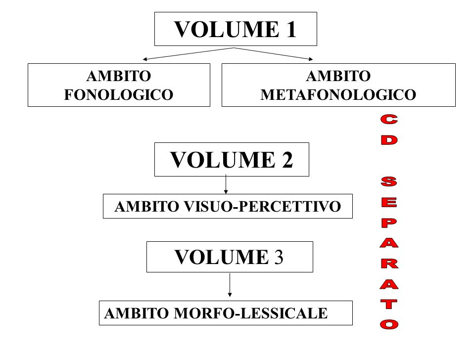 AMBITO METAFONOLOGICO AMBITO VISUO-PERCETTIVO
