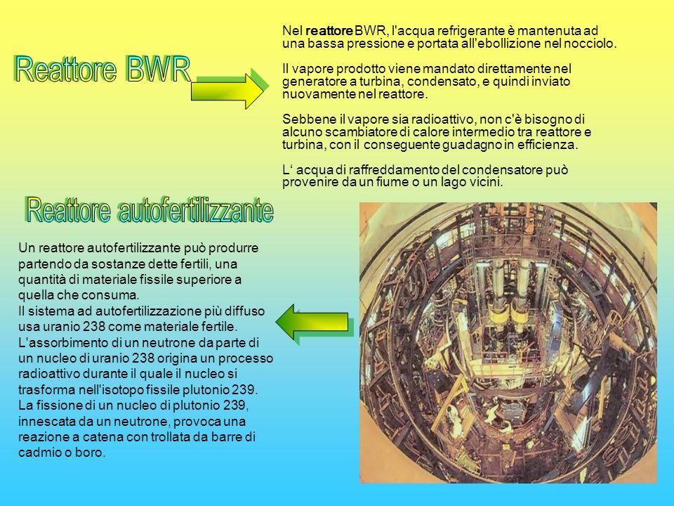 Reattore autofertilizzante