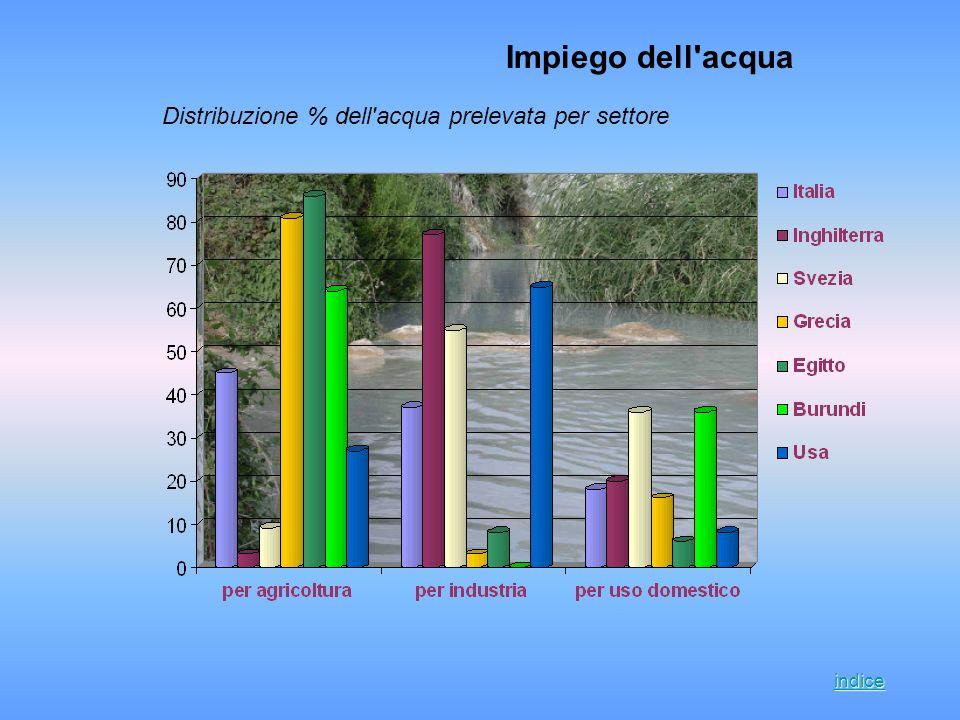Impiego dell acqua Distribuzione % dell acqua prelevata per settore