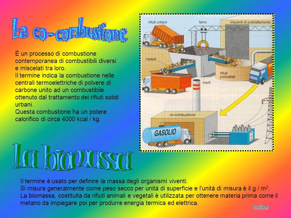 La co - combustione La biomassa