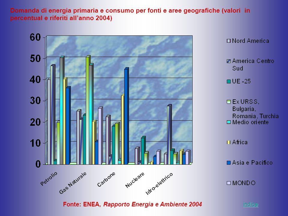 Domanda di energia primaria e consumo per fonti e aree geografiche (valori in percentual e riferiti all'anno 2004)