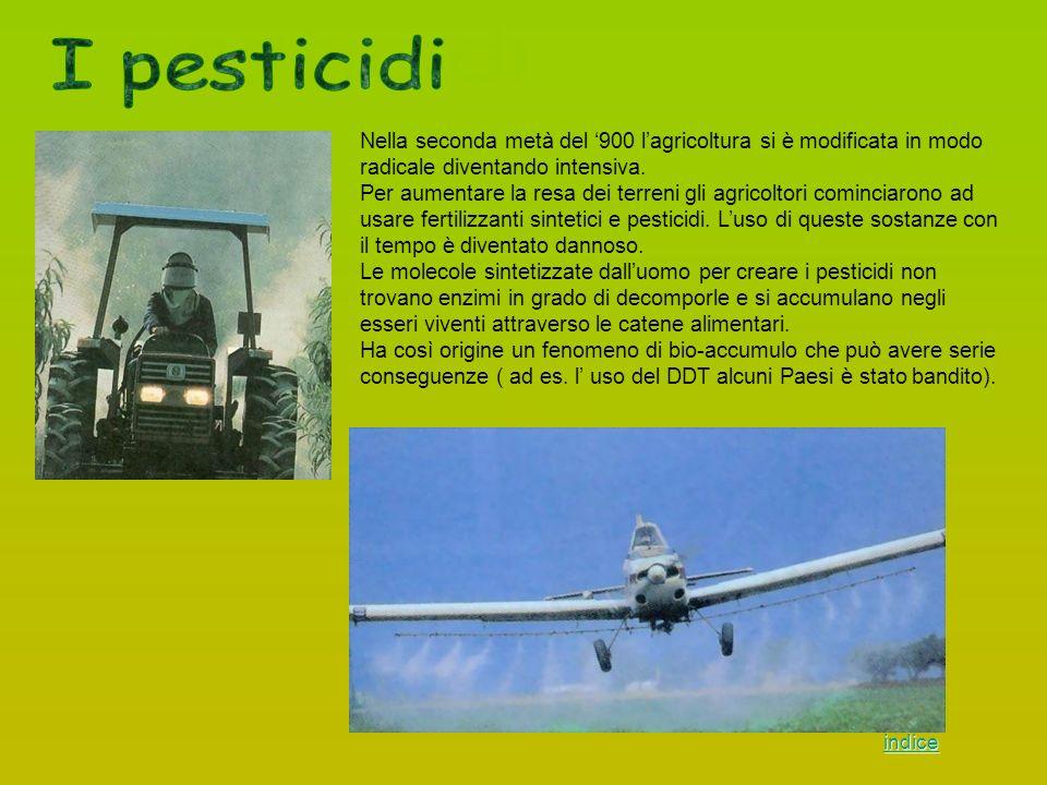 I pesticidi Nella seconda metà del '900 l'agricoltura si è modificata in modo radicale diventando intensiva.