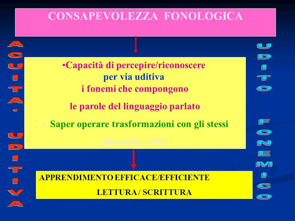 CONSAPEVOLEZZA FONOLOGICA le parole del linguaggio parlato