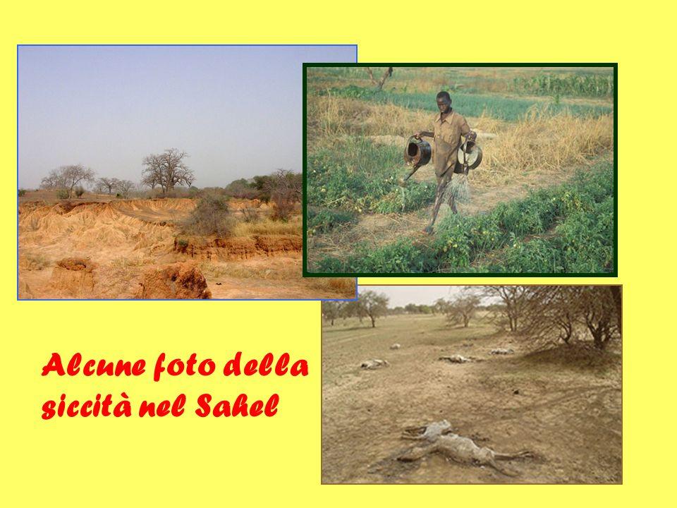 Alcune foto della siccità nel Sahel