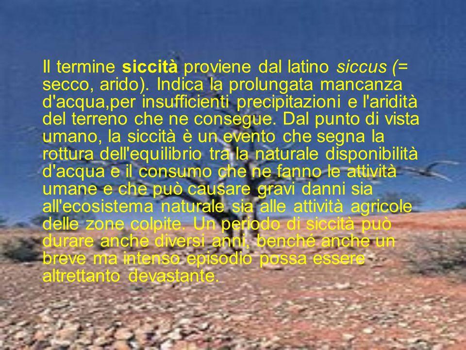 Il termine siccità proviene dal latino siccus (= secco, arido)