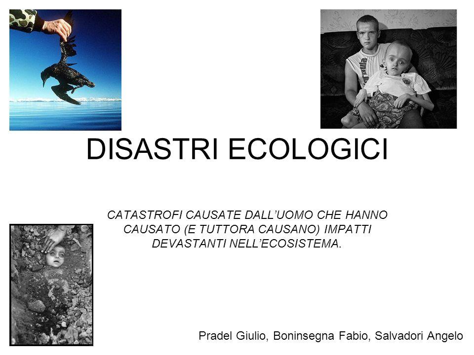 DISASTRI ECOLOGICI CATASTROFI CAUSATE DALL'UOMO CHE HANNO CAUSATO (E TUTTORA CAUSANO) IMPATTI DEVASTANTI NELL'ECOSISTEMA.