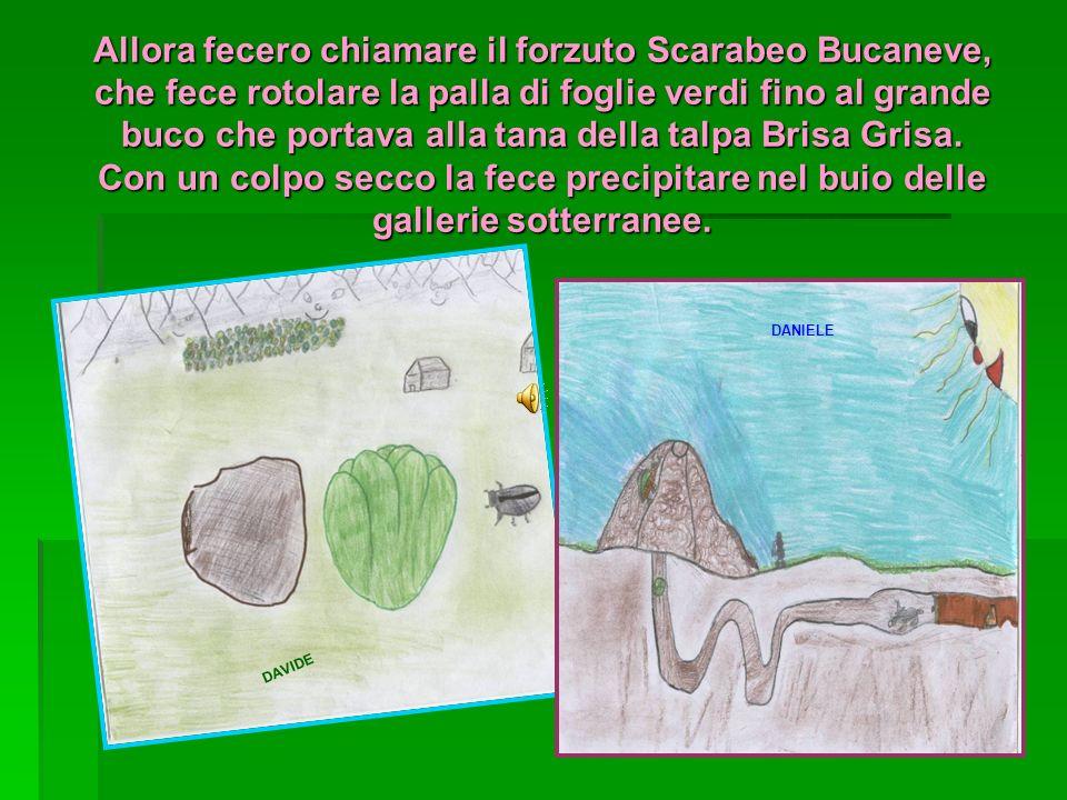 Allora fecero chiamare il forzuto Scarabeo Bucaneve, che fece rotolare la palla di foglie verdi fino al grande buco che portava alla tana della talpa Brisa Grisa. Con un colpo secco la fece precipitare nel buio delle gallerie sotterranee.