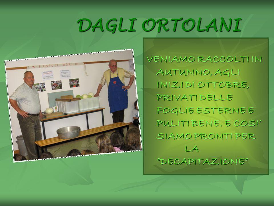 DAGLI ORTOLANI