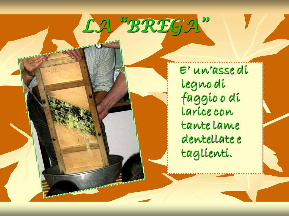 LA BREGA E' un'asse di legno di faggio o di larice con tante lame dentellate e taglienti.