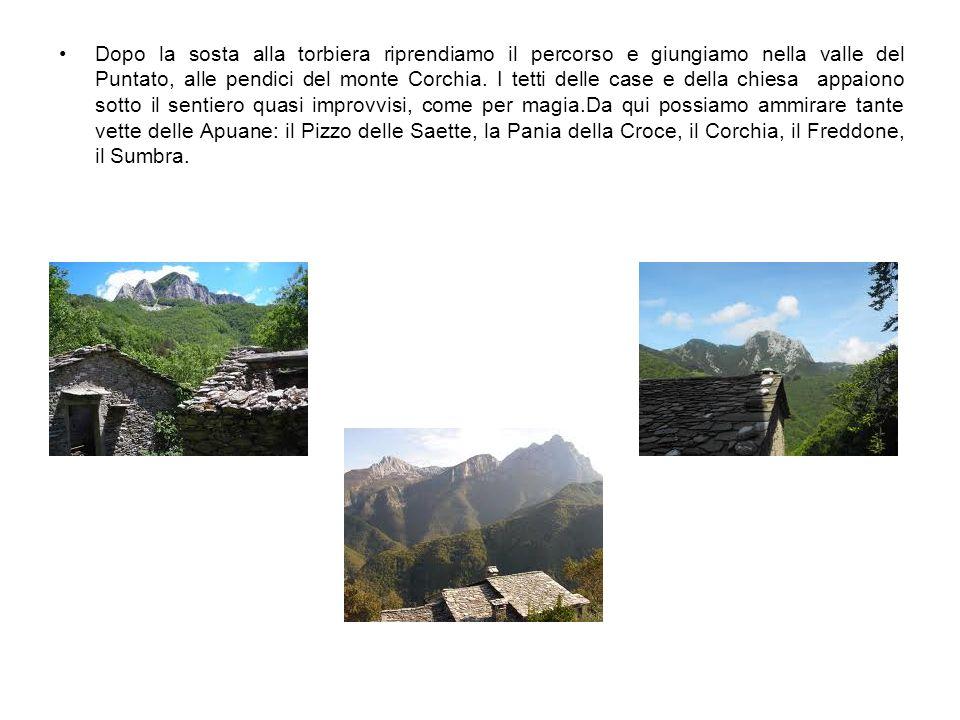 Dopo la sosta alla torbiera riprendiamo il percorso e giungiamo nella valle del Puntato, alle pendici del monte Corchia.