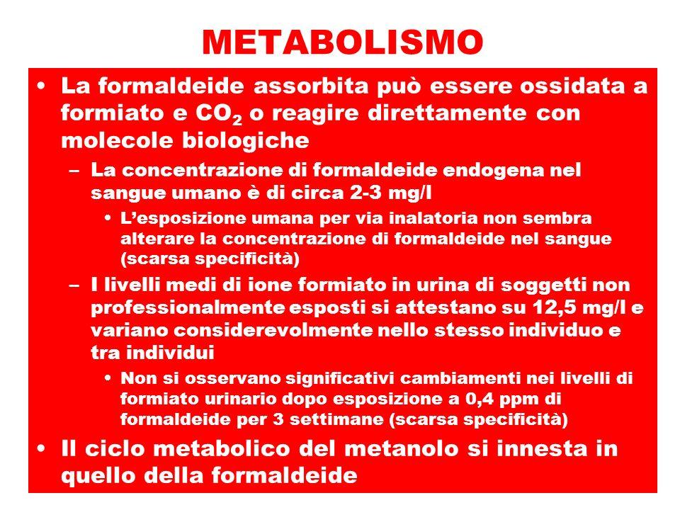 METABOLISMO La formaldeide assorbita può essere ossidata a formiato e CO2 o reagire direttamente con molecole biologiche.