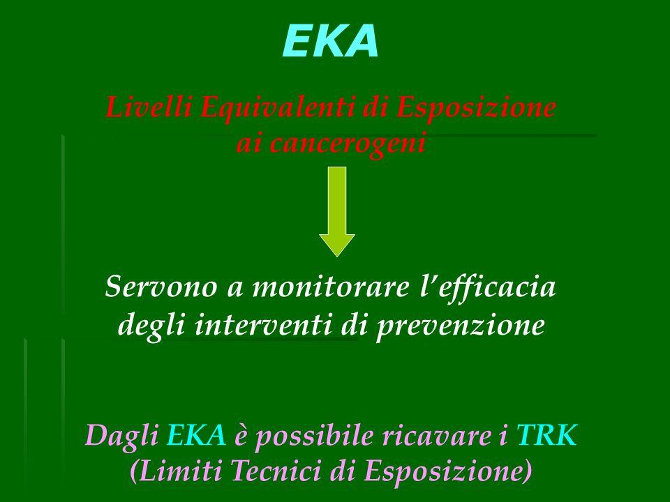 EKA Servono a monitorare l'efficacia degli interventi di prevenzione